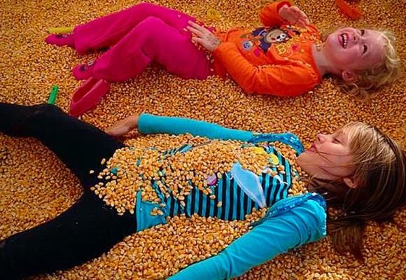 BiWater farm family fun